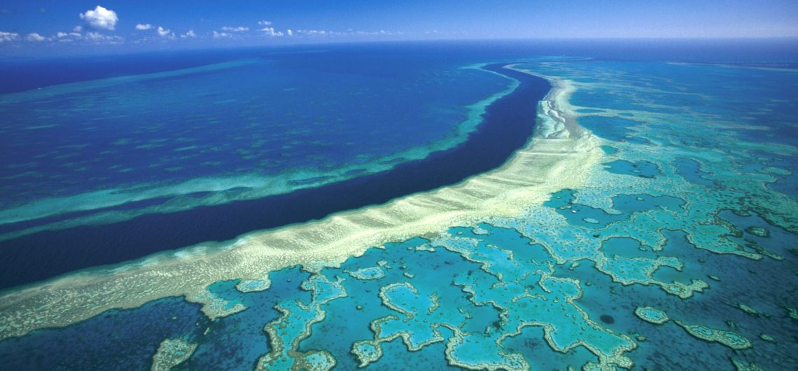 Great-Barrier-Reef-Aerial-View-From-Top - GOLIVE