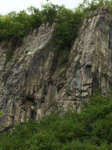 Катерачен обект Дряновски Манастир - GOLIVE