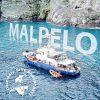 godive Malpelo Columbia