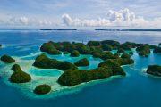 GoDive Palau, Micronesia - Golive.bg