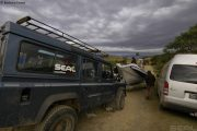 Водолазна ваканция Sardine Run Южна Африка - golive.bg